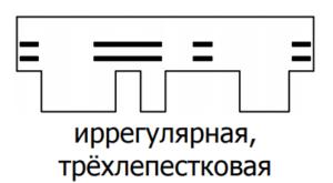 Форма тетрис
