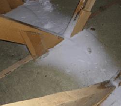 Снег под крышей